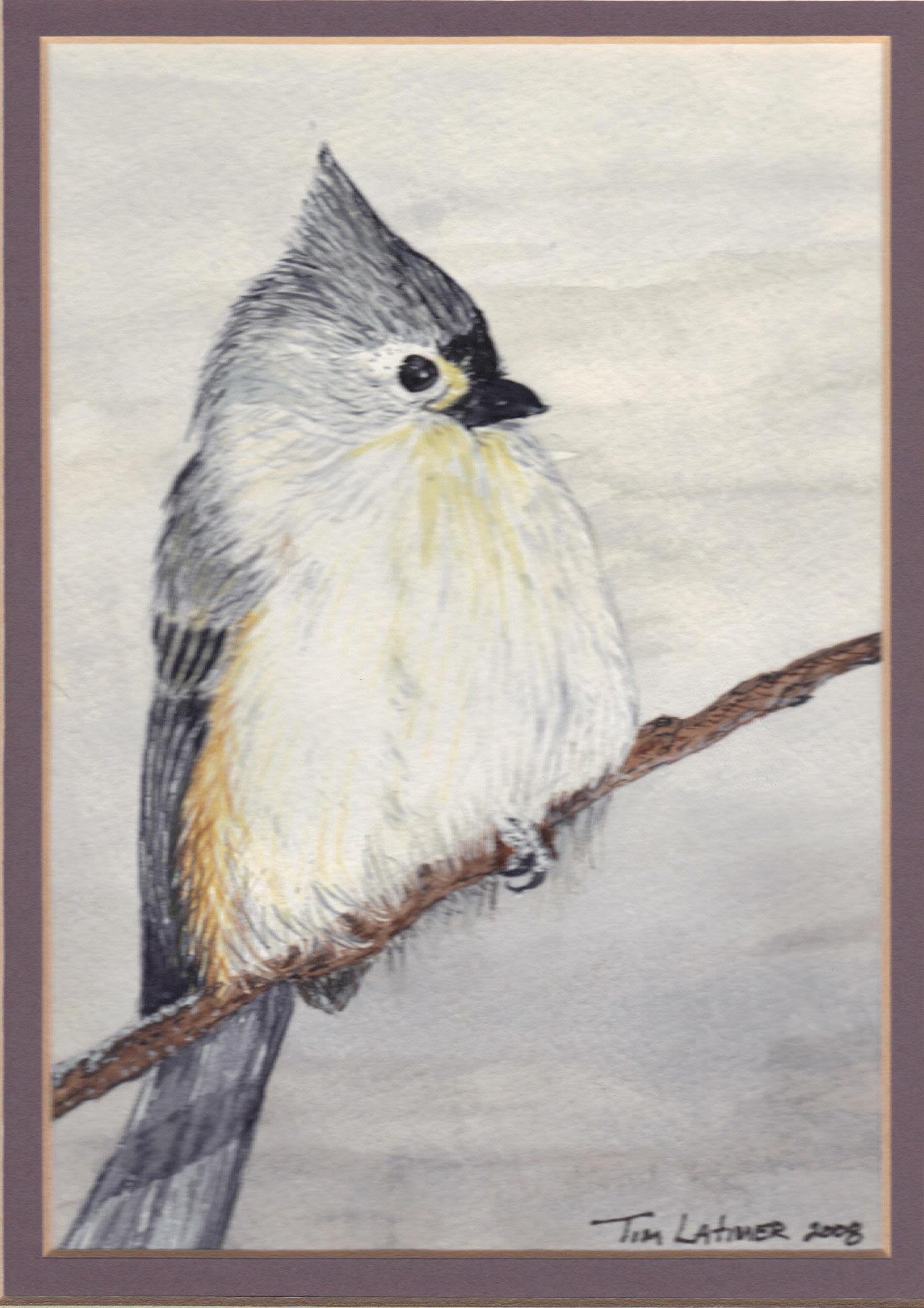 applique bird quilt | Tim Latimer - Quilts etc