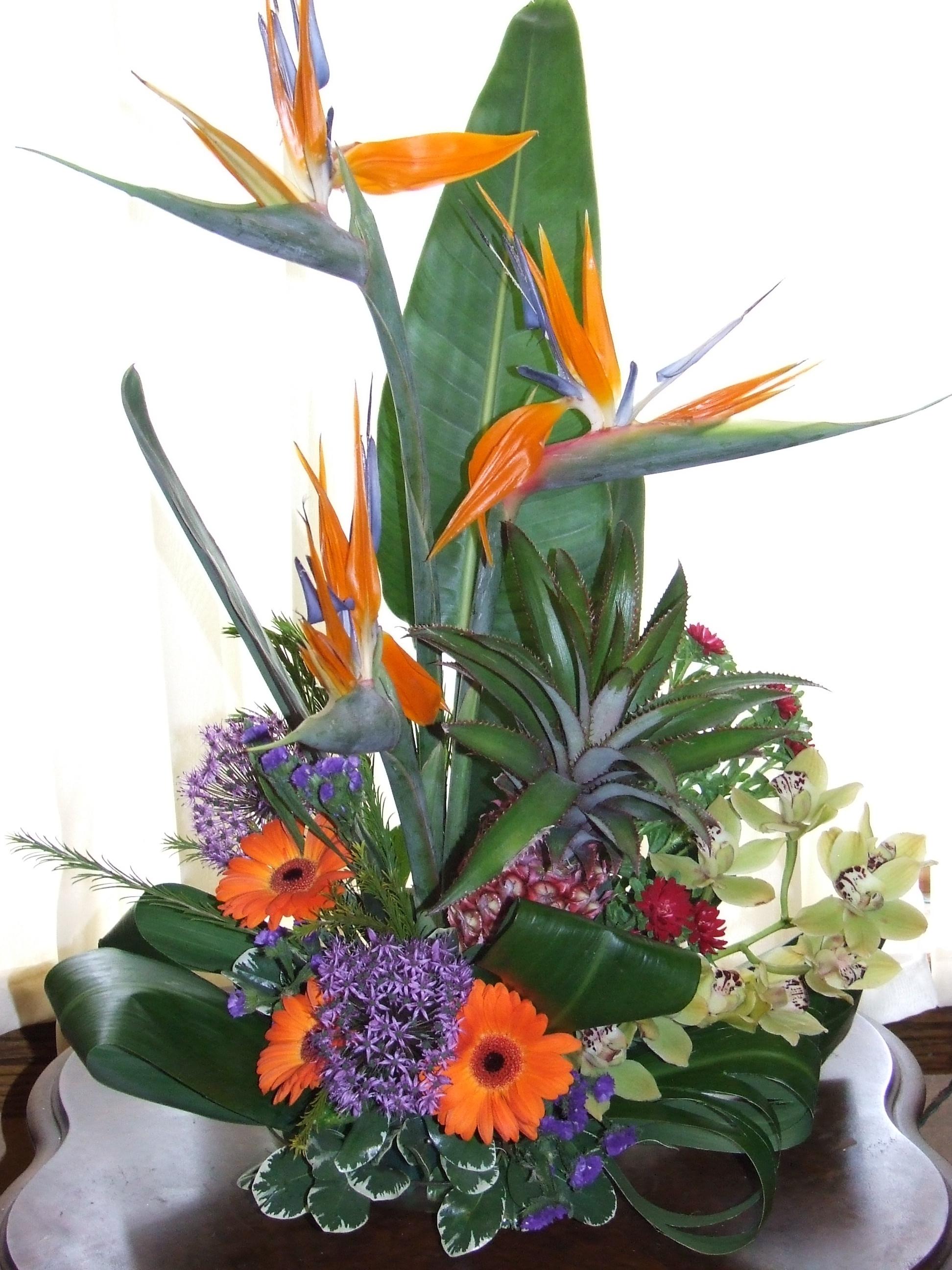 Floral Design Classes Tim Latimer Quilts Etc