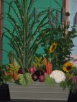 floral design using vegetables 5