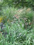 flat garden....but moist!