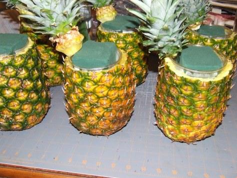 2010_07125-27-11-pineapple0004