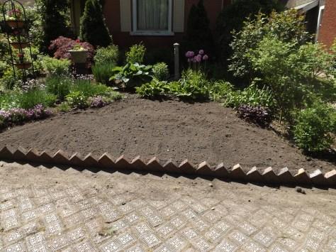 garden 5-25-13 002