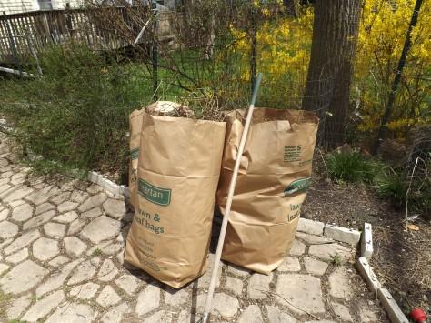 garden update 5-4-13 006