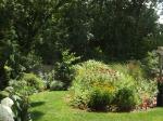 garden 7-11-13 003