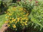 garden 7-11-13 005