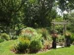 garden 7-11-13 016