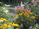 Lily and Rudbeckia