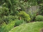 garden 7-4-13 010