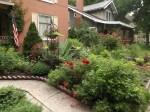 garden 7-4-13 025