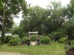 garden 7-4-13 026