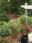 garden update 8-2-13 002