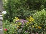 garden update 8-2-13 003