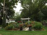 garden update 8-2-13 004
