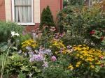 garden update 8-2-13 006