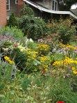 garden update 8-2-13 016