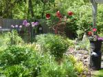 back flower bed