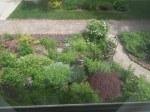 """Front garden as seen through the window in my """"studio"""""""
