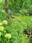 Side of the back garden